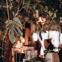 We houden van groen bij COFFEELAB